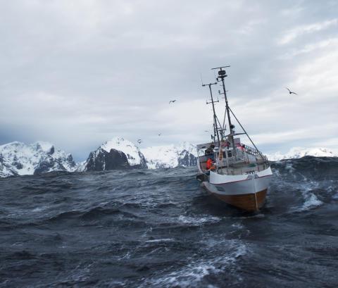 Stor interesse for Hvitfisk2019