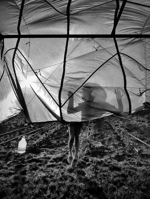 © Serkan Çolak, Turkey, Shortlist, Open competition, Motion, Sony World Photography Awards 2021