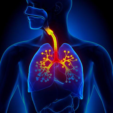 Blueair says new American study indicates HEPA air purifiers may help control kids asthma