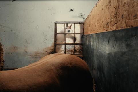© Francesco Lopazio, Italy, Shortlist, Open competition, Street Photography, Sony World Photography Awards 2021
