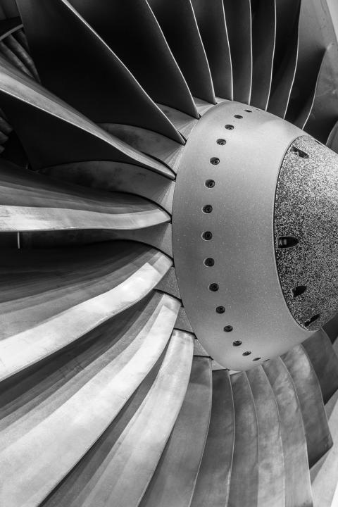 Engine fan blade of a 737-800 aircraft