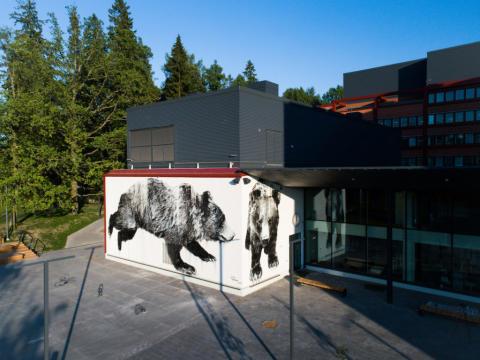 Karhu juoksee kahdella seinällä: Jussi TwoSevenin teos valmistui Otaniemen lukion julkisivuun