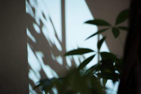 Sony_Hidden Senses_9