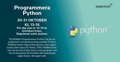 Programmera Python på höstlovet!