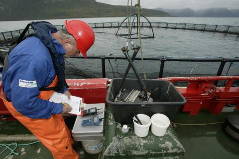 Marine droner bidrar til kunnskap for oppdrettsnæringen - seminar i Bodø 9. august