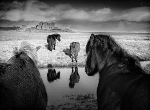 2668_1380843_0_© Baerbel Brechtel, National Awards, Winner, Germany, 2019 Sony World Photography Awards (1)