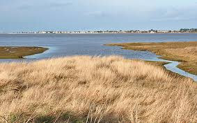 No agreement on Findhorn BAy wildfowling