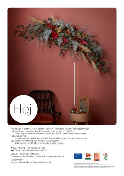 Branschinbjudan till utställningen Stars in combination with long lasting flowers som blomsterdekoratör Anna Gouteva skapat med julstjärnor