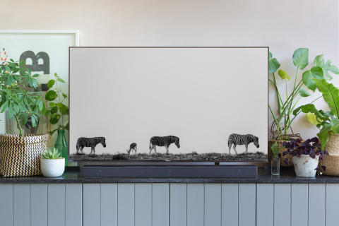 Living Room style with Sony ZF9 Soundbar 4e