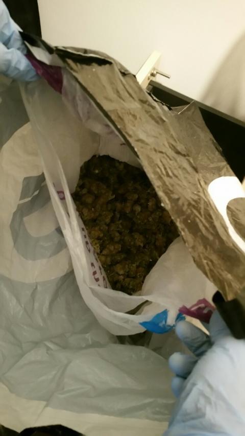 Cannabis seized - Op Target