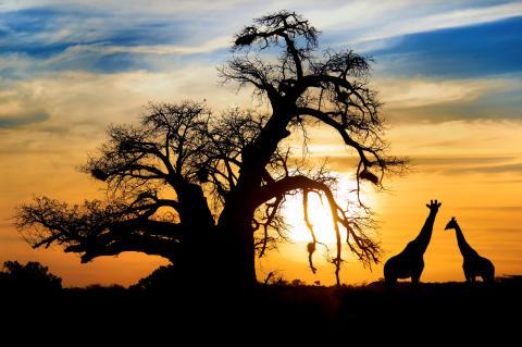 Store Verden - aktiv ferie i Sør - Afrika