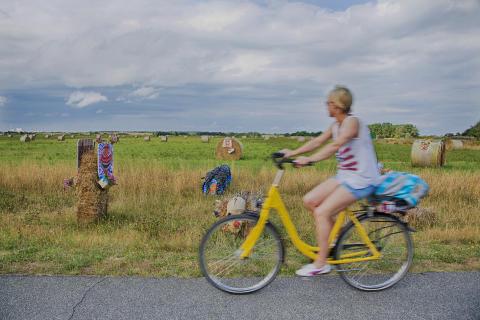 Fahrradfahren in Braderup