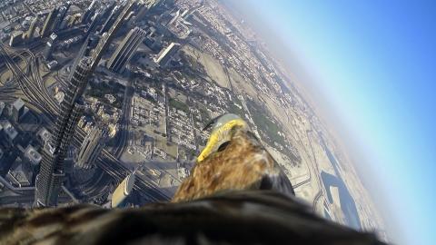 Adlerflug_Burj Khalifa_Freedom_von Sony_02
