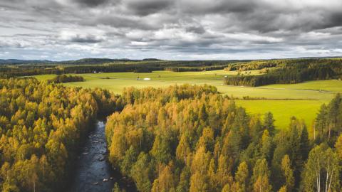 Telia fortsätter leverera till regionerna i norr