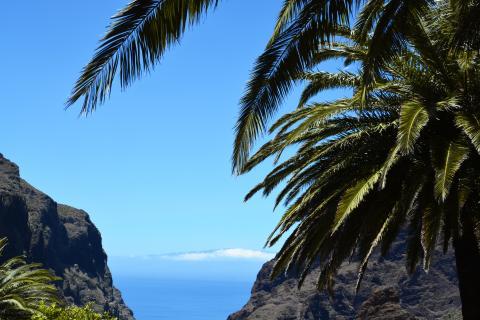 Die Insel des ewigen Frühlings