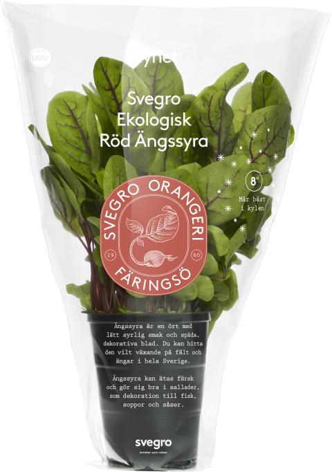 Svegro Vilda Smaker - ekologisk röd ängssyra