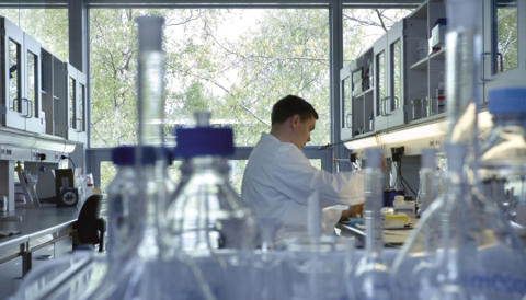 Chr. Hansen scientist spearheads development of new international standard for counting bacteria