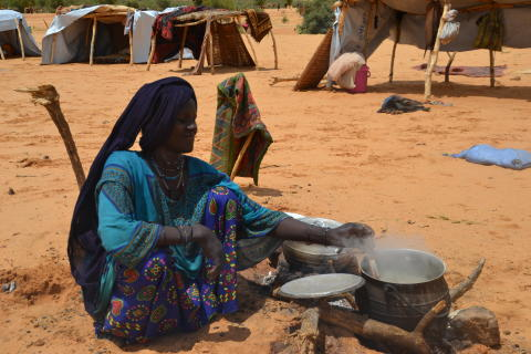 HUNGER IS NOT INEVITABLE IN THE SAHEL: PRIORITIES FOR RESILIENCE AND DEVELOPMENT