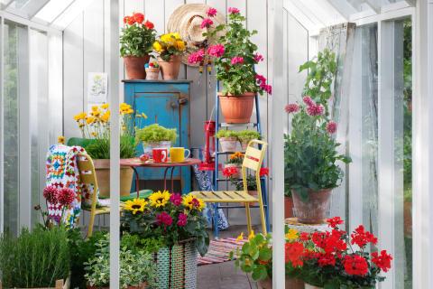 Trädgårdsflärd 2