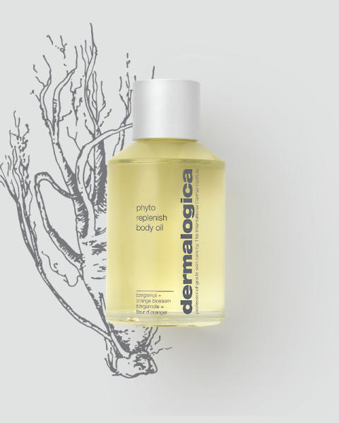 Phyto Replenish Body Oil with Ginseng Illustration