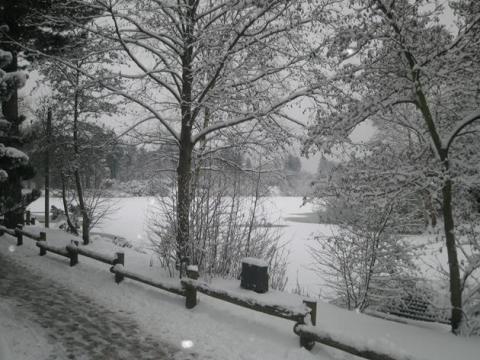 Center Parcs Sherwood Forest faces the snow