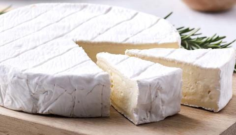 New starter culture secures mild and creamy soft cheeses