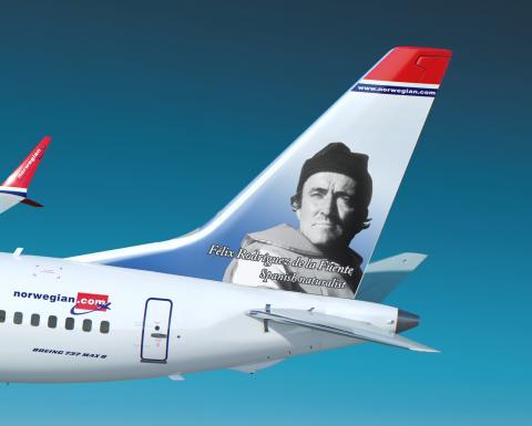 Rodriguez de la Fuente - Boeing 737 MAX 8 - detalle