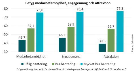 SKI Medarbetare 2020 - Betyg nojdhet engagemang och attraktion.jpg