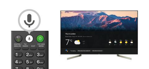 BRAVIA TV von Sony_Google Assistant