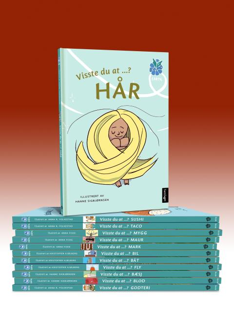12 nye lettlesbøker i Leseland-serien illustrert av 4 av Noregs fremste illustratørar