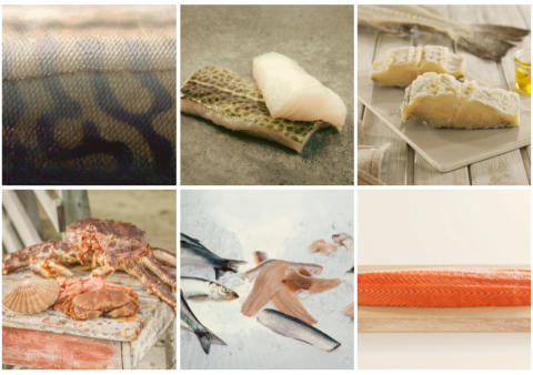 Best ever first quarter for Norwegian seafood exports
