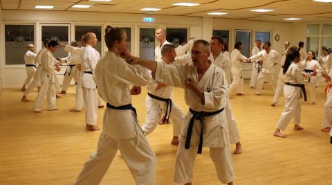Alingsås Karateklubb