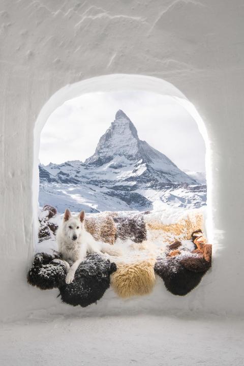 Ouverture du Prix national suisse des Sony World Photography Awards 2019 : une chance à saisir pour tous les photographes de la Suisse