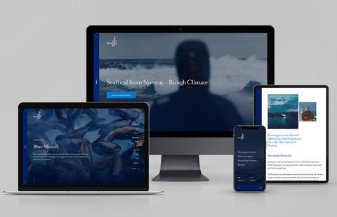 Høythengende designpris til Sjømatrådets internasjonale nettsider
