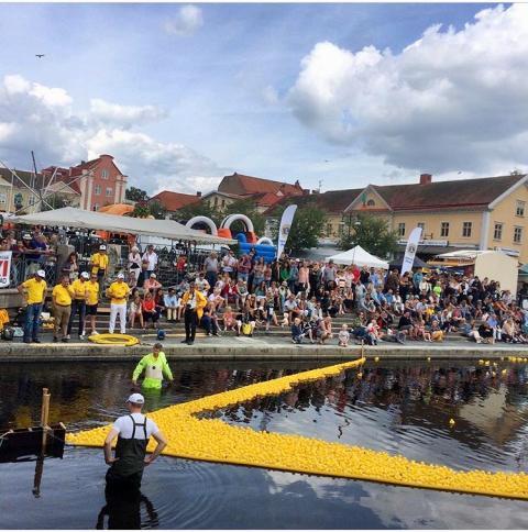 Pressinbjudan: Potatisfestivalen 2019