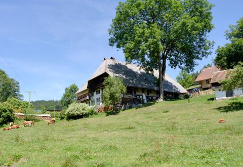 Sanierungspreis 18 - Gewinner Holz - Gebäudehebung Hägelochhof Langenschiltach