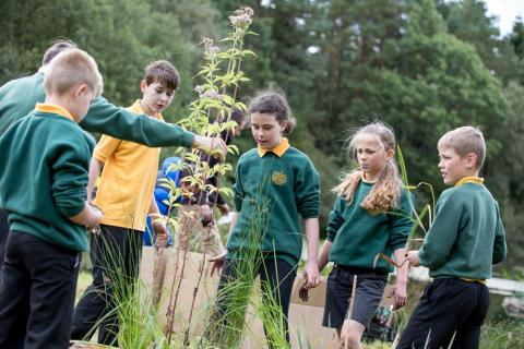School pupils learn to plant and install a floating ecosystem at Brodie Pond