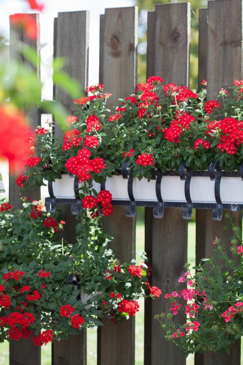 Balkonglådor med färg