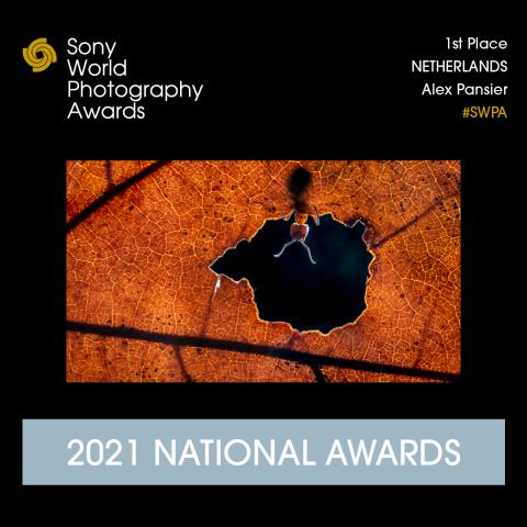 Alex Pansier wint Netherlands National Awards 2021