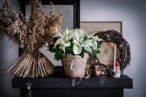 5. Julstämning med stjärnor tolkat av Åsa Myrberg, atmycasa