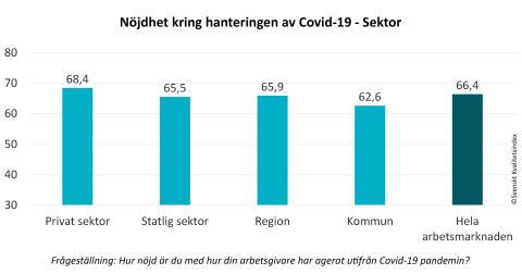 SKI Medarbetare 2020 - Nojdhet hantering av Covid19 sektor.jpg