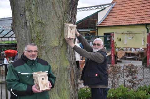 Nistkästen für mehr Nachhaltigkeit: Sinnvolles und nützliches Projekt von Hephata-Gärtnerei und Firma C.H. Schmitt