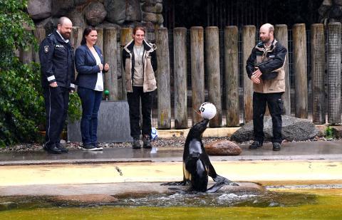"""Zoo-Orakel """"Deutschland-Schweden"""""""