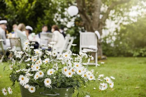 Sommarfest med Sofieromargeriter_högupplöst