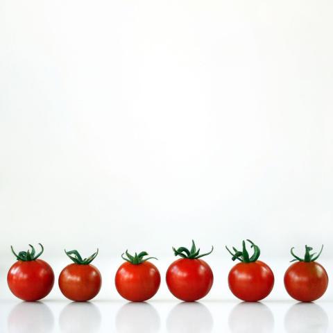 Är det detta som är ketchupeffekten?  Ford och Heinz samarbetar om hållbara fordonsmaterial