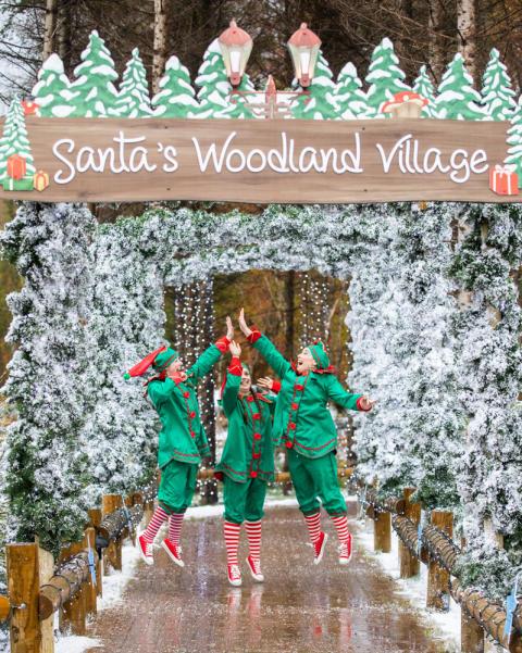 Santa's elves jump for joy as Winter Wonderland opens at Center Parcs Longford Forest