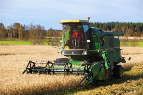 Norrländsk spannmålsproduktion