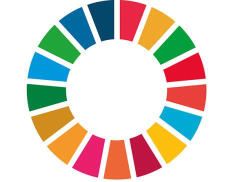 Swedfund i internationellt samarbete för ökad klimatfinansiering