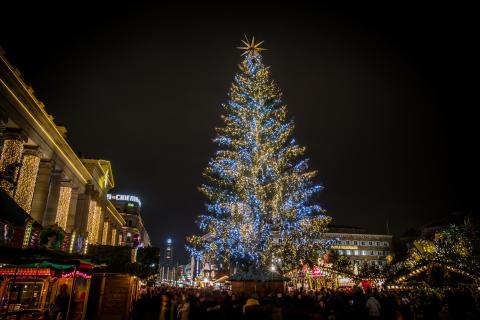 8. Weihnachtsbaum in Stuttgart