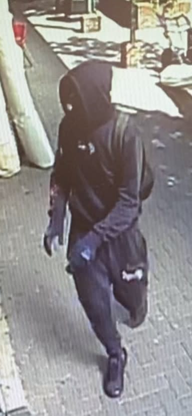 Image of suspect [1]